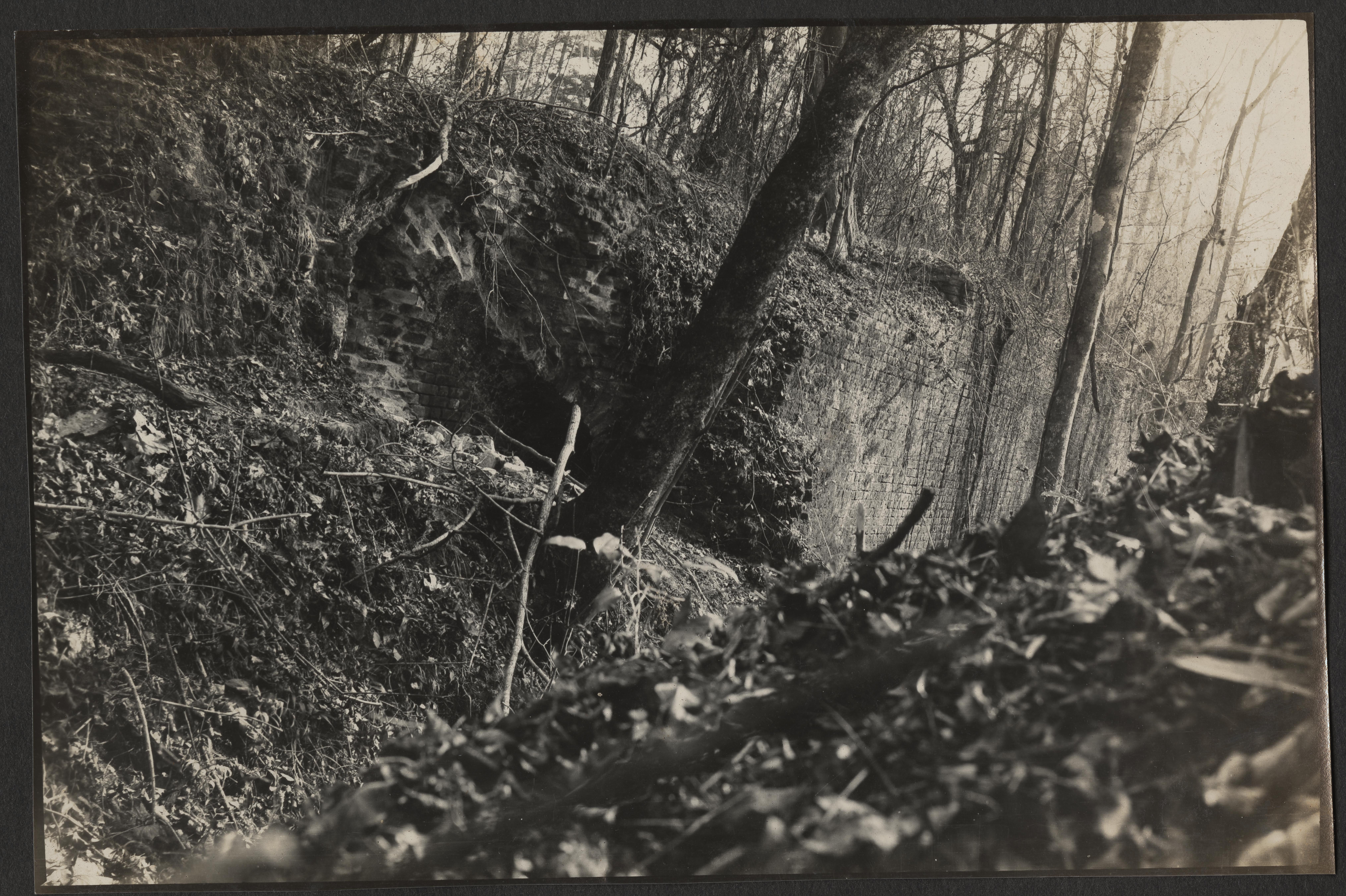 Santee-Cooper Cemetery Investigation 007