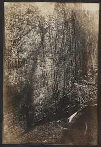 Santee-Cooper Cemetery Investigation 006