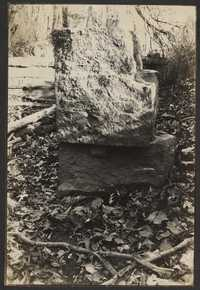 Santee-Cooper Cemetery Investigation 030