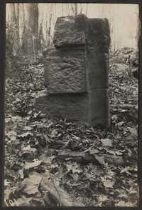 Santee-Cooper Cemetery Investigation 029