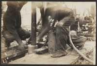 Santee-Cooper Cemetery Investigation 040