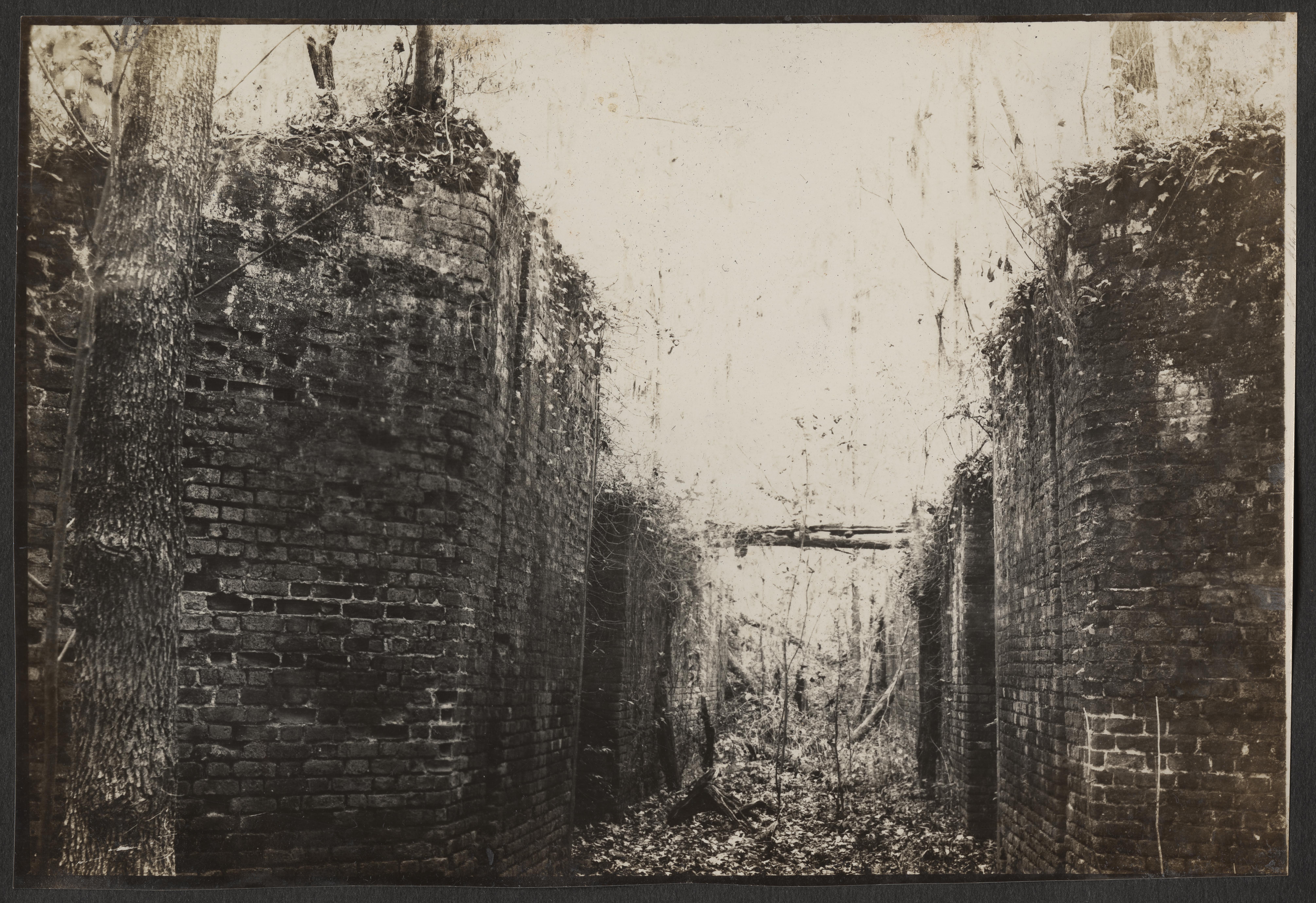 Santee-Cooper Cemetery Investigation 012