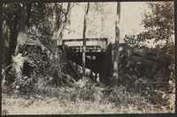 Santee-Cooper Cemetery Investigation 014