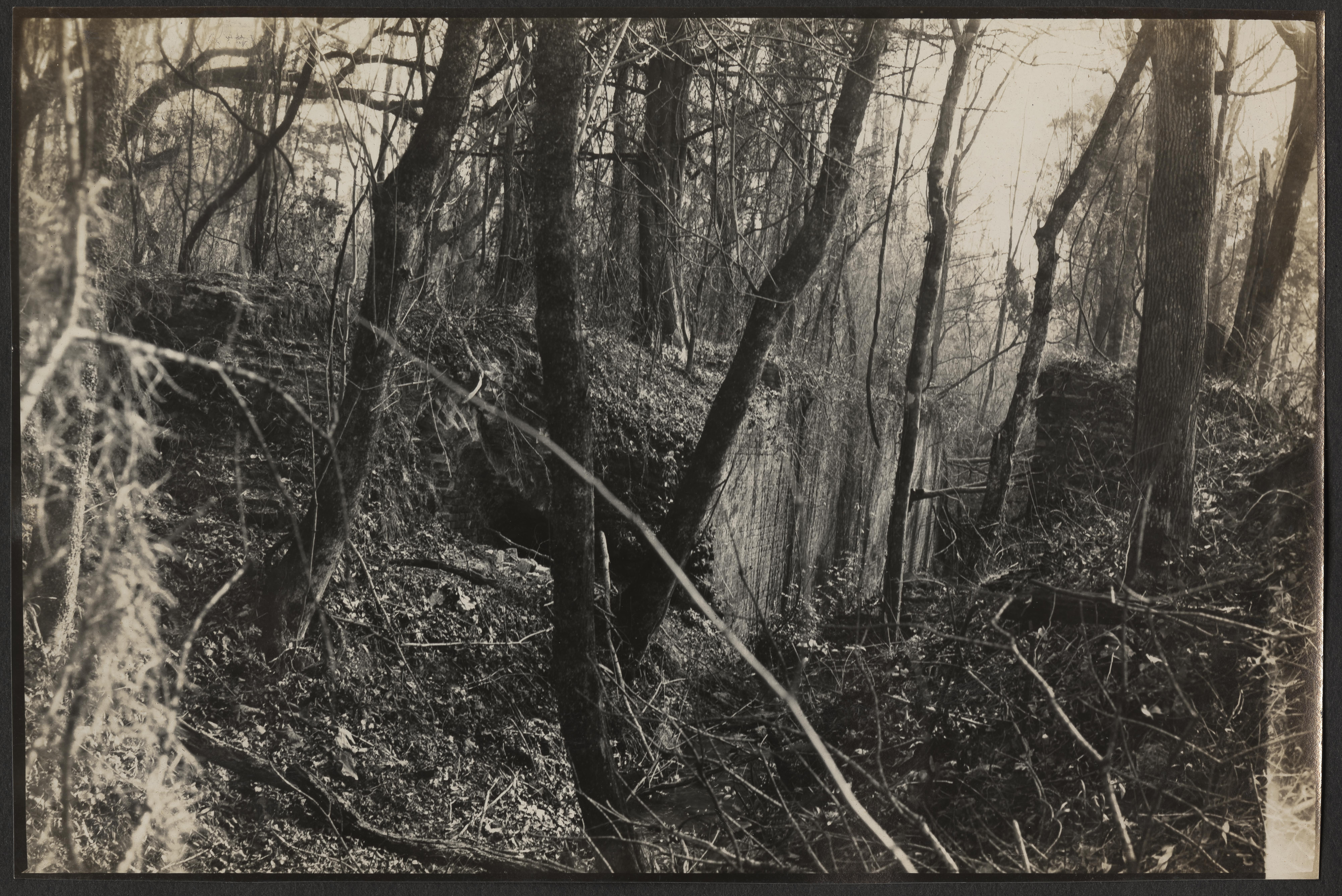 Santee-Cooper Cemetery Investigation 008
