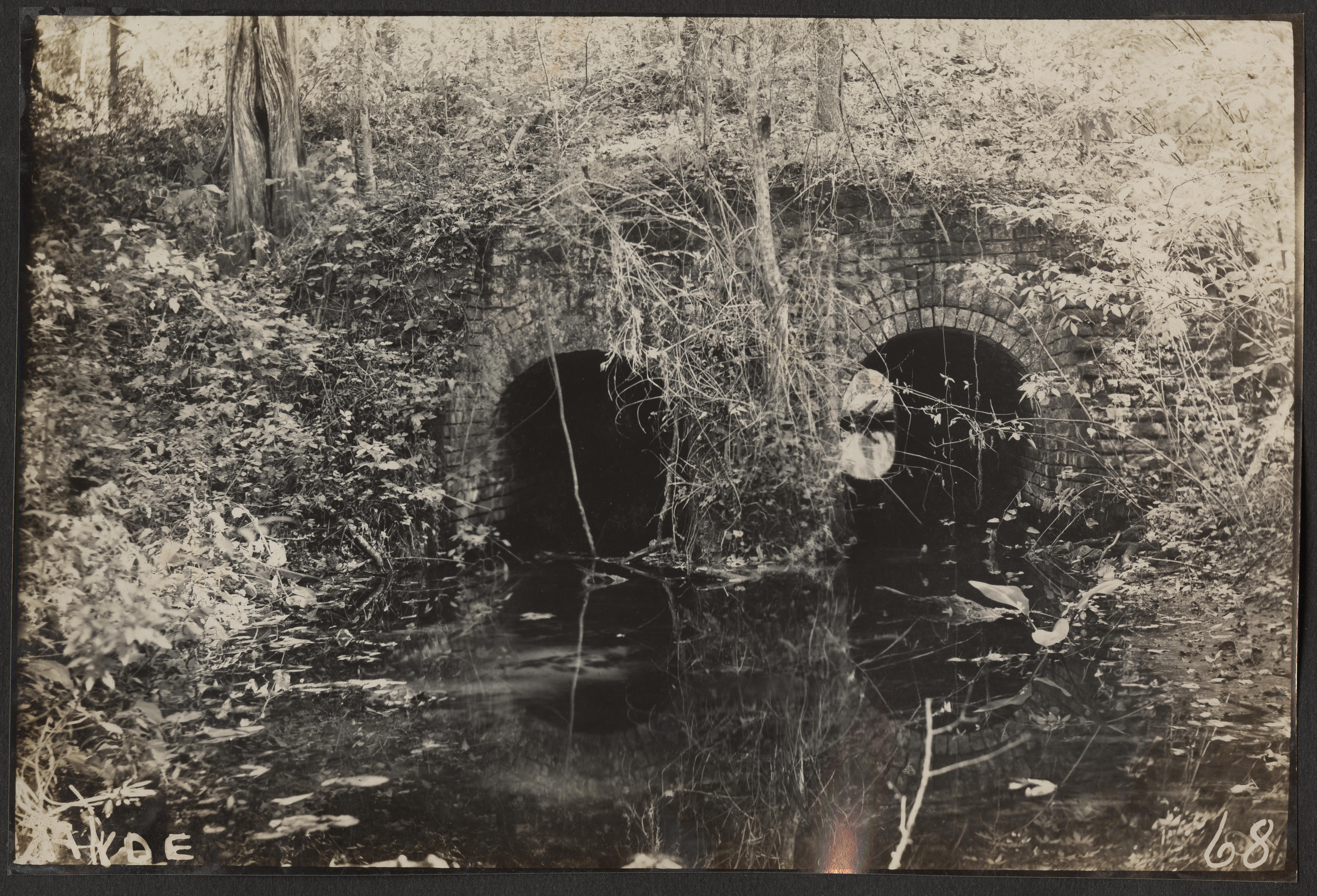 Santee-Cooper Cemetery Investigation 021
