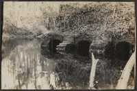 Santee-Cooper Cemetery Investigation 022