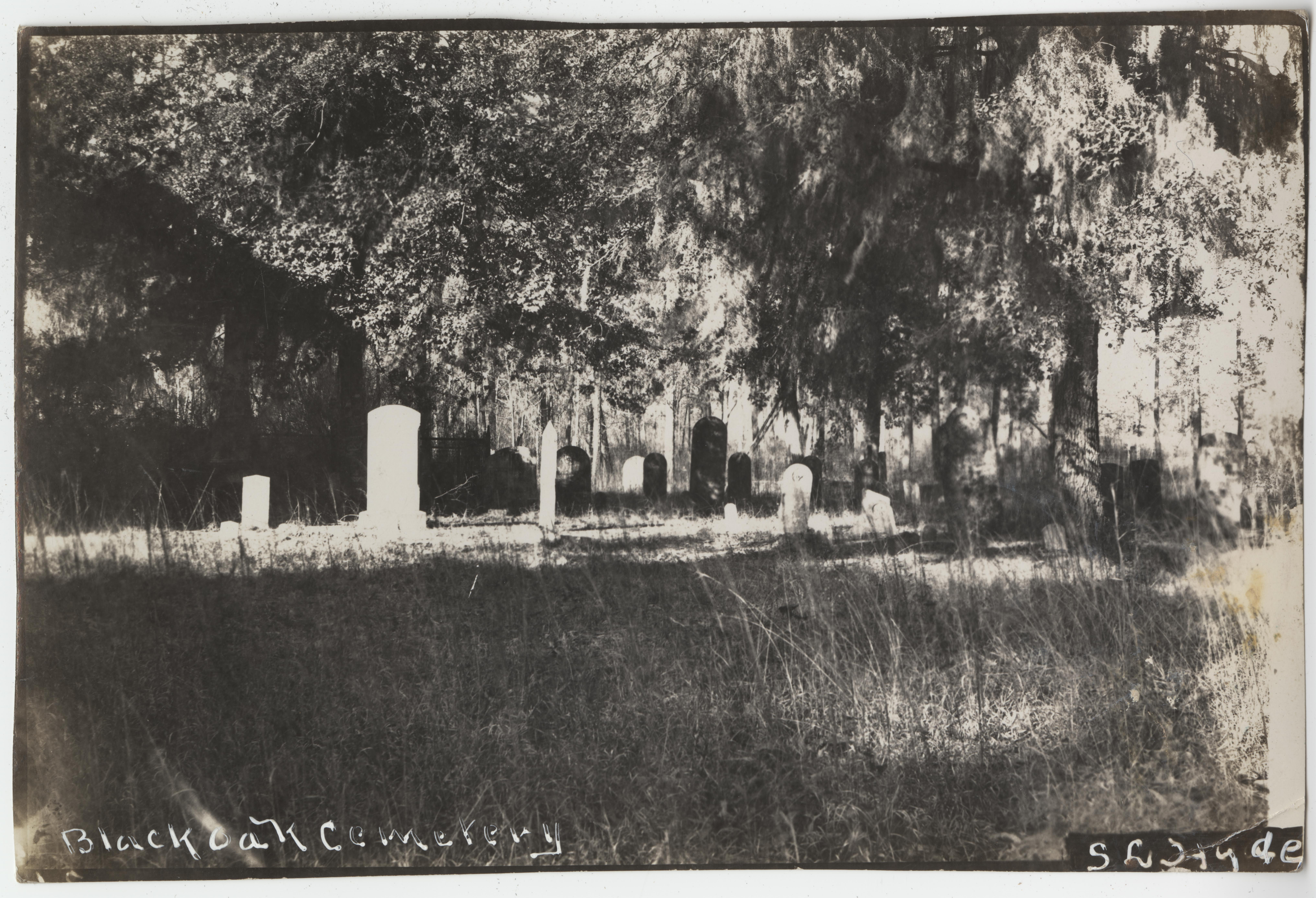 Santee-Cooper Cemetery Investigation 093
