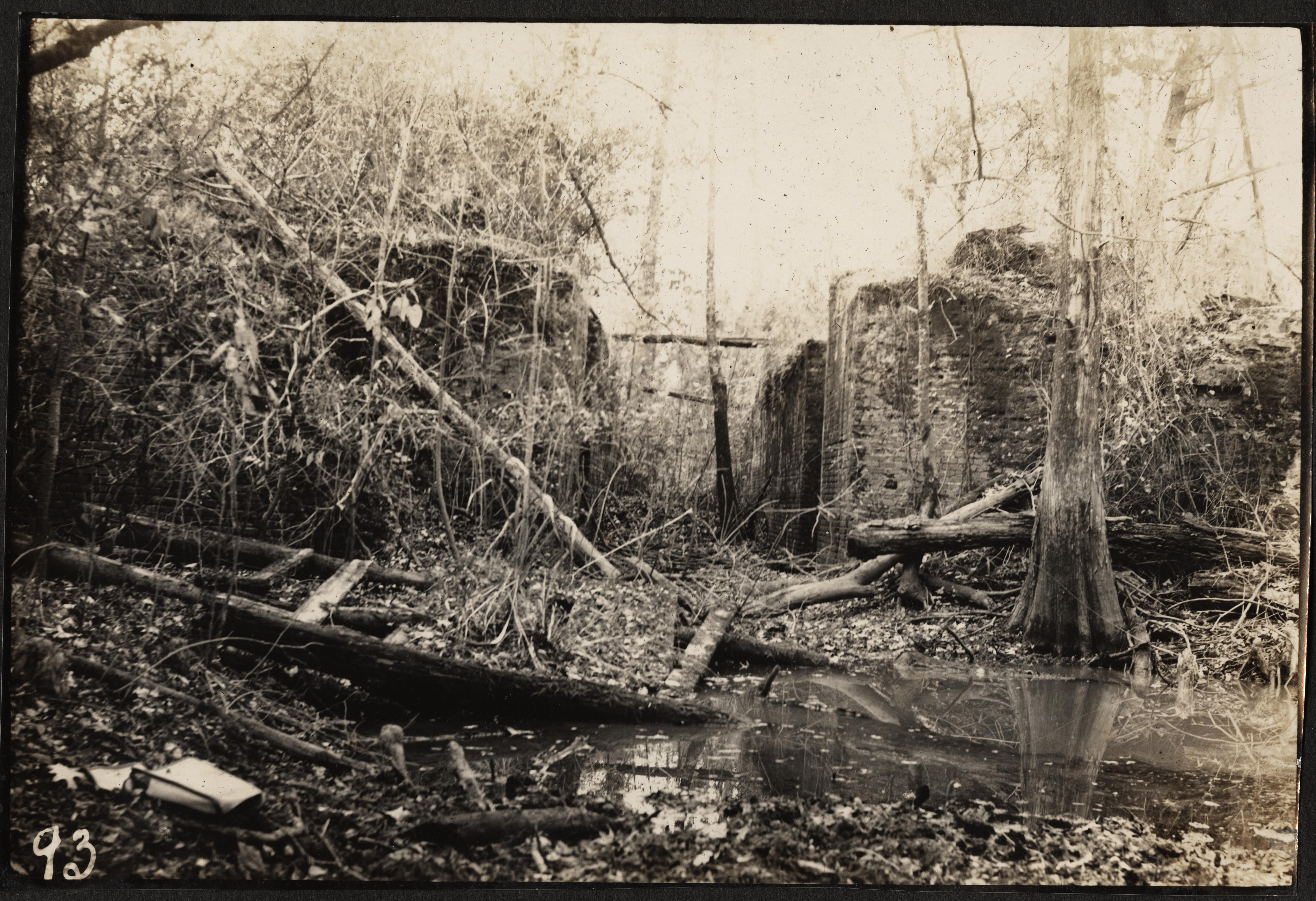 Santee-Cooper Cemetery Investigation 081