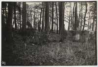 Santee-Cooper Cemetery Investigation 103