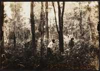 Santee-Cooper Cemetery Investigation 076