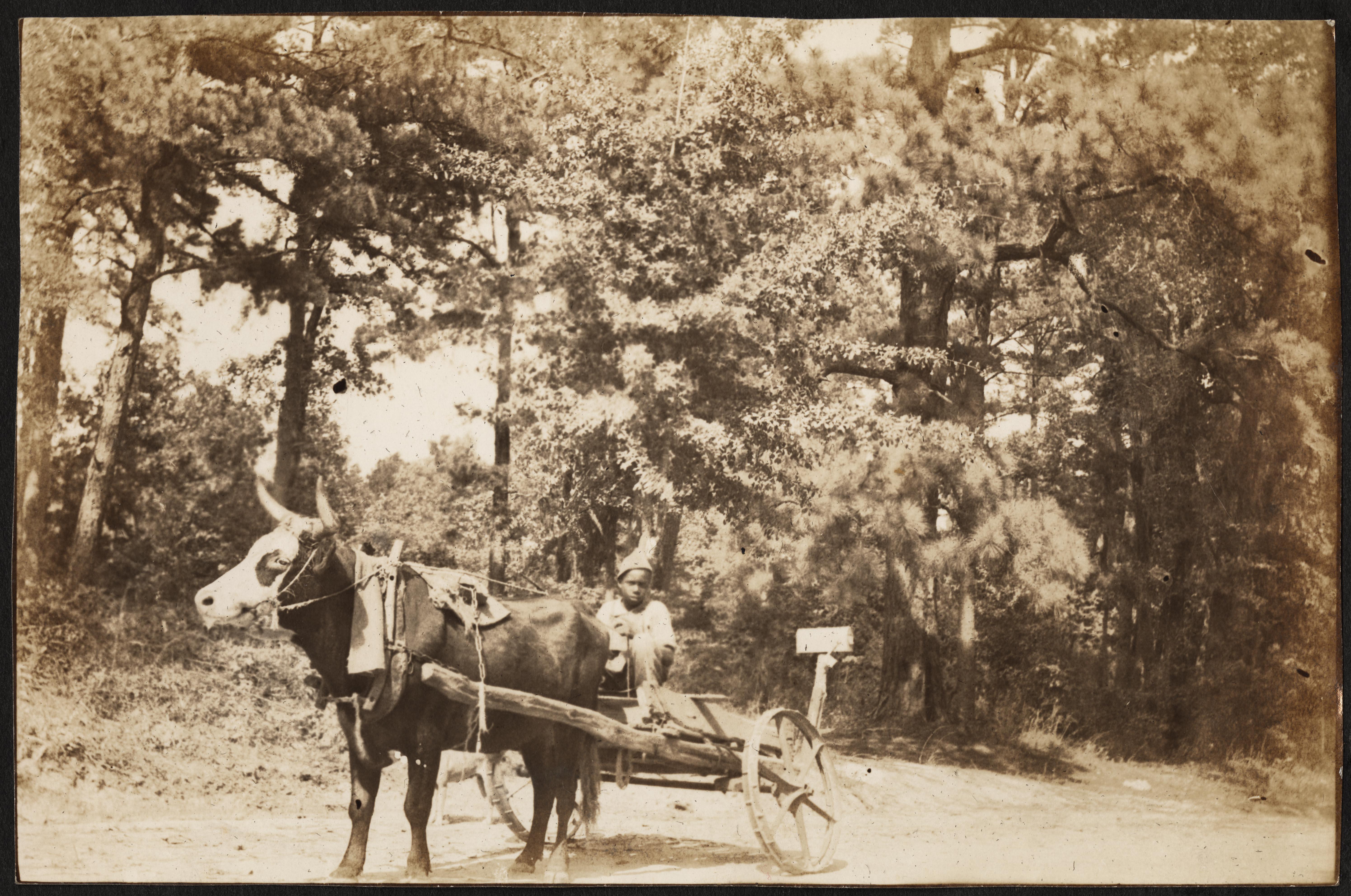 Santee-Cooper Cemetery Investigation 080