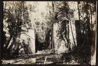 Santee-Cooper Cemetery Investigation 087