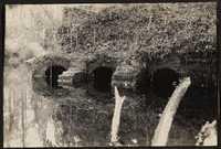 Santee-Cooper Cemetery Investigation 089