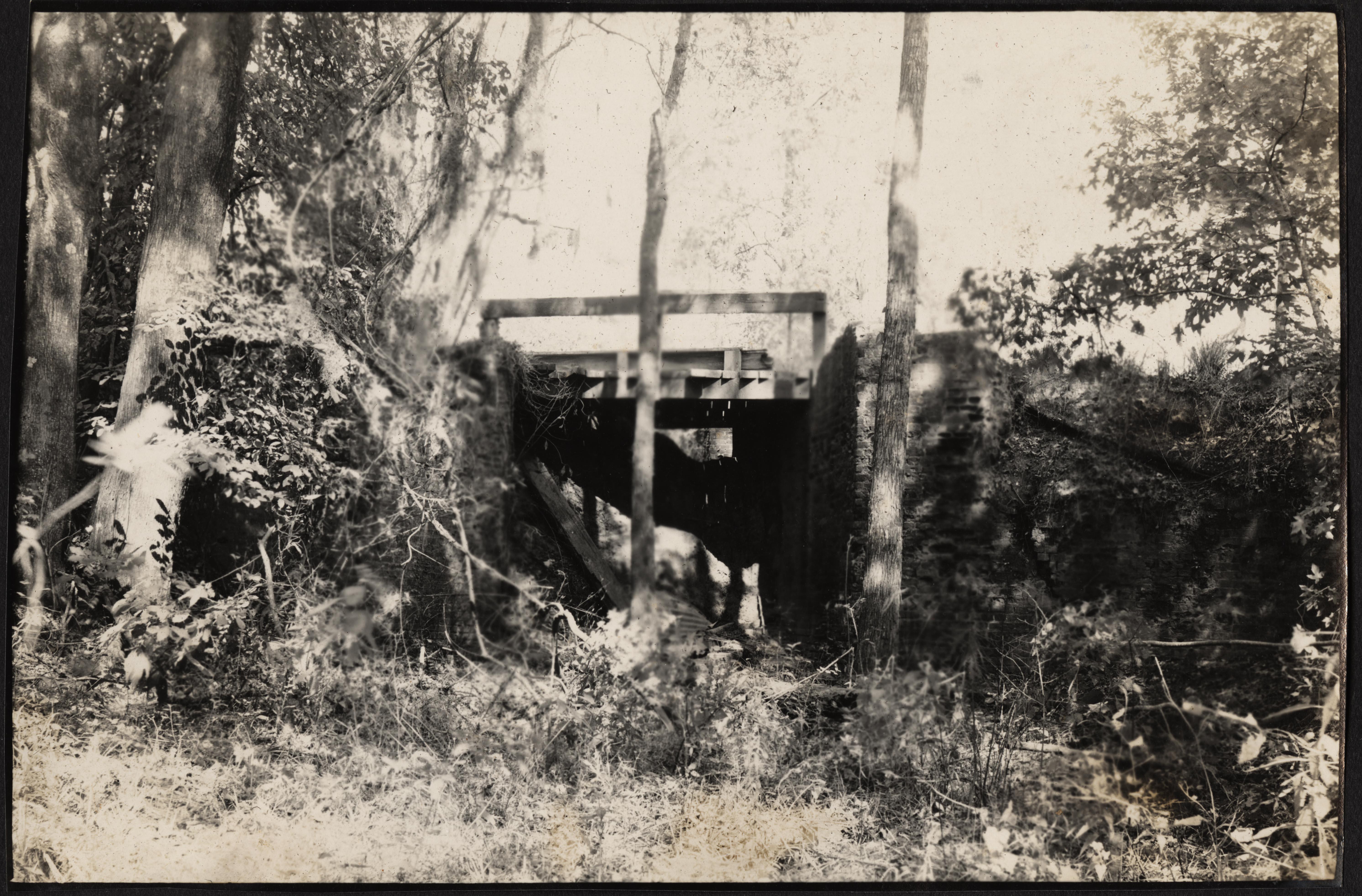 Santee-Cooper Cemetery Investigation 084