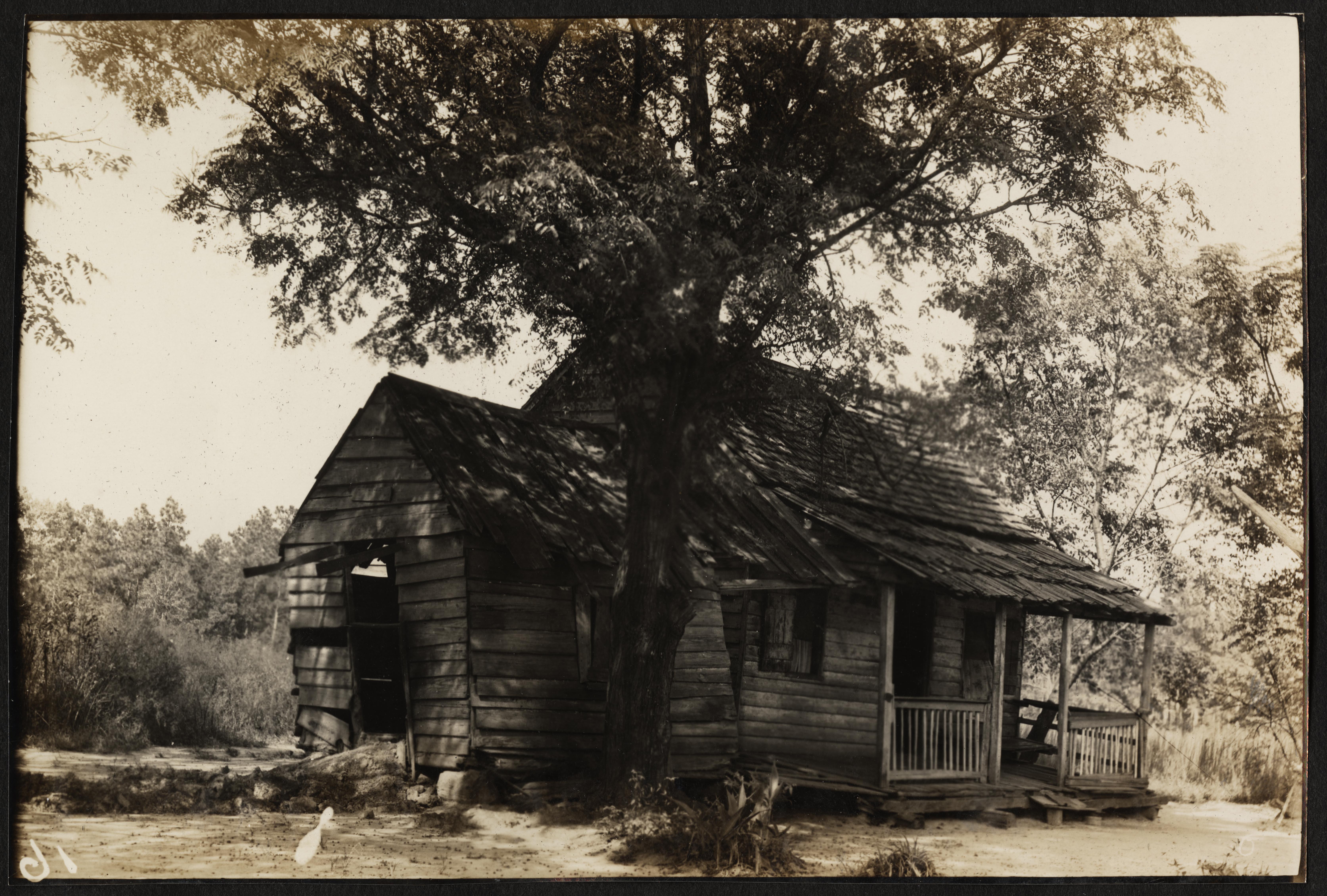 Santee-Cooper Cemetery Investigation 061