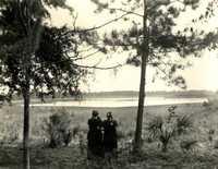 Plantations, Otranto Plantation