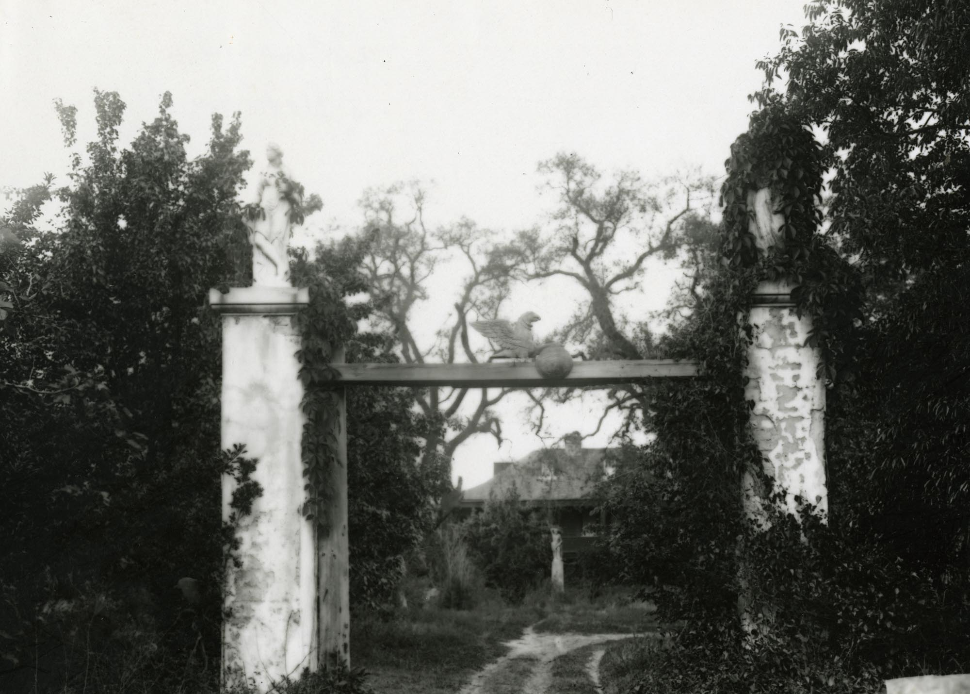 Plantations, Unknown