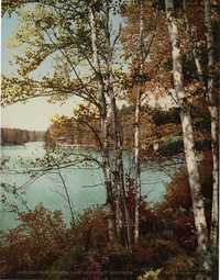 The Inlet, Spit Fire Lake, Adirondack Mountains