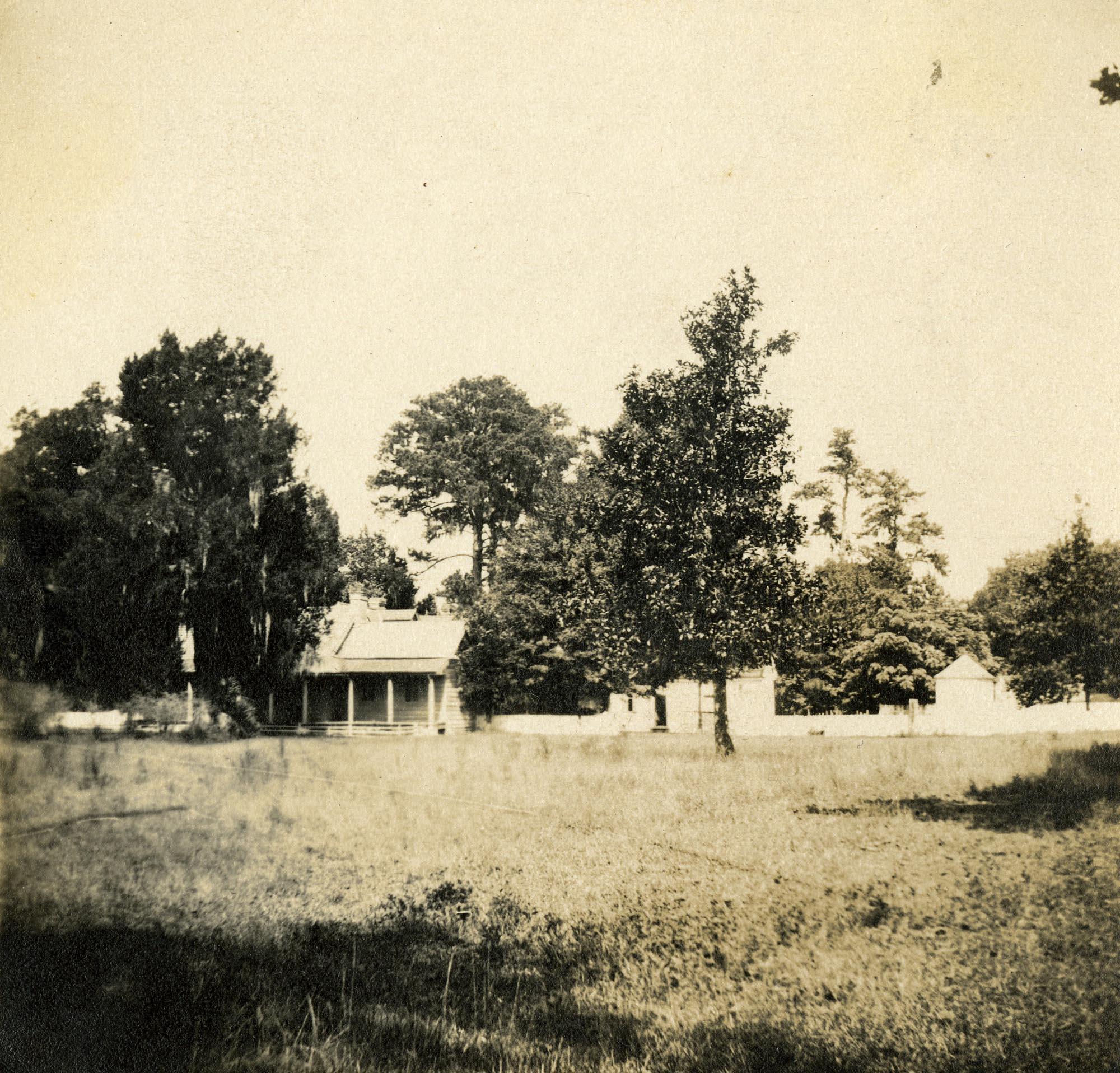 Plantations, White Hall Plantation