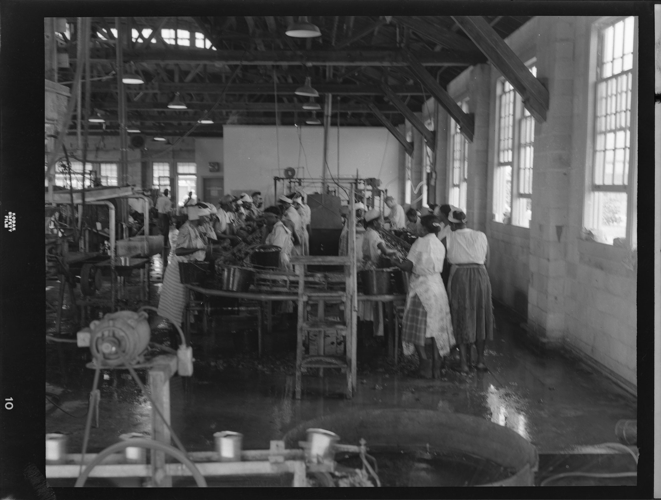 Youngblood Packing Plant production line