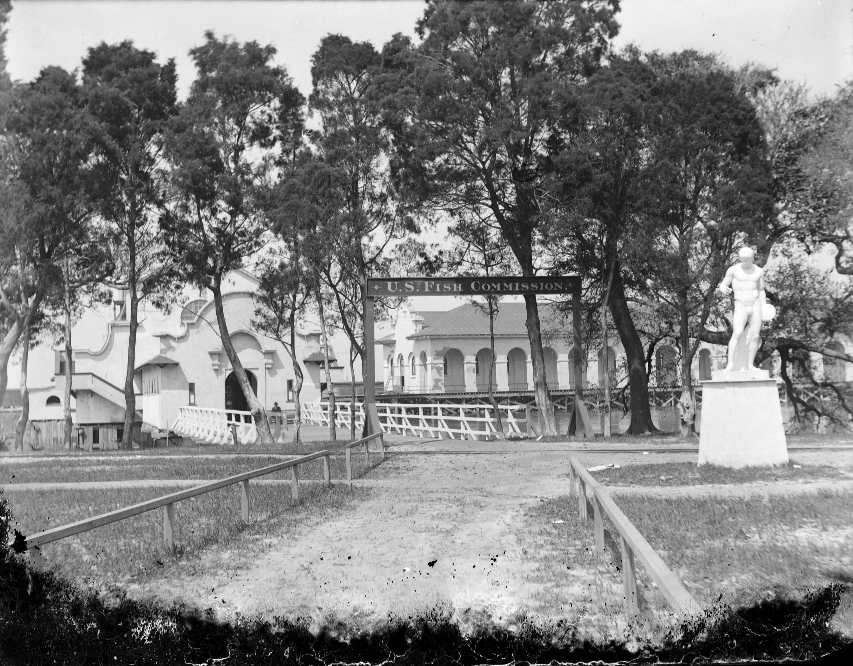 Johnson 191