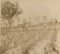 Men, barrels and irrigation pipeline in field