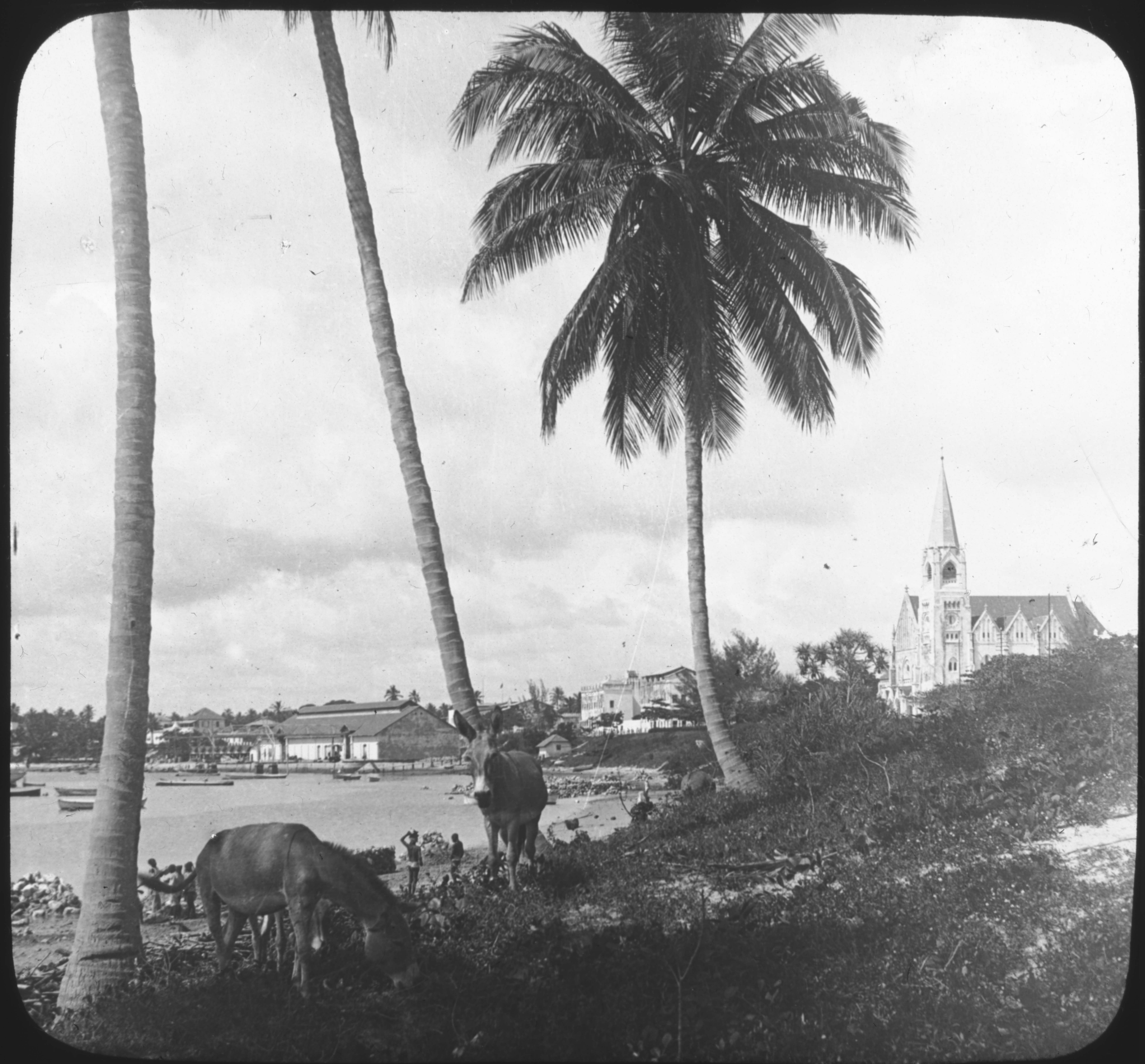 Dar-es-Salaam, German E. Africa.