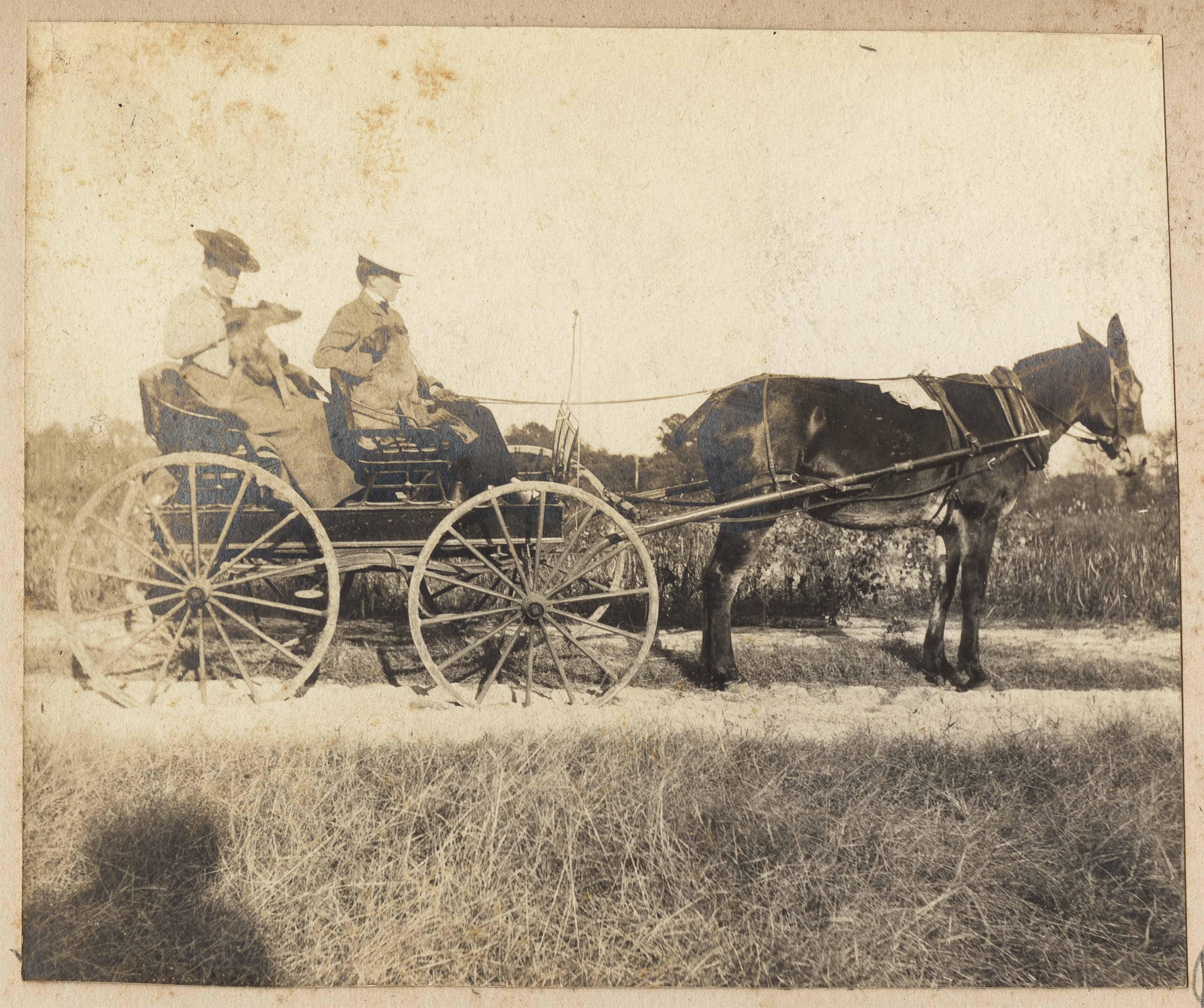 Two women and dog in wagon