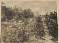Railroad tracks on Halls Island