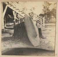 Model boat keel leaning against tree stump