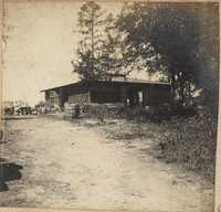 Another view of packing shed