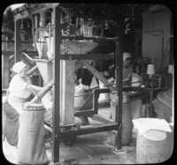 Filling and Sewing Bags of Granulated Sugar, New York City.