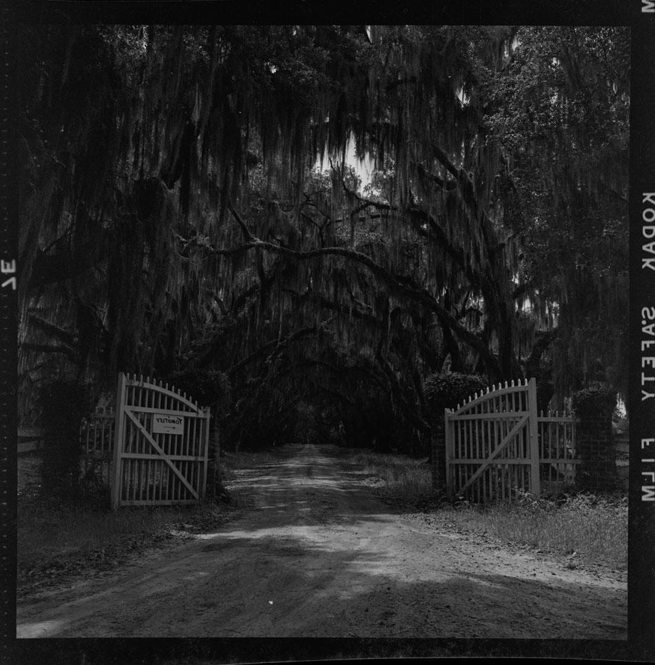 Gates at Tomotley Plantation