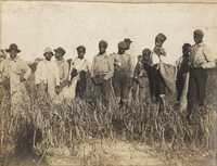 Group of African American children some with sacks