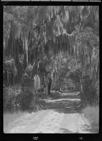 Entrance to Tomotley Plantation