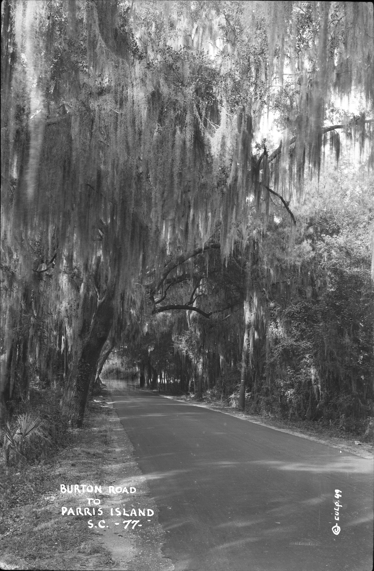 Burton Road to Parris Island SC upright view
