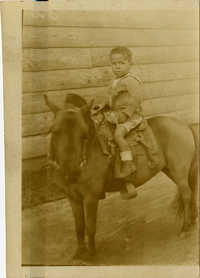 Boy sitting on pony