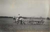 Empty hay wagon in Altona