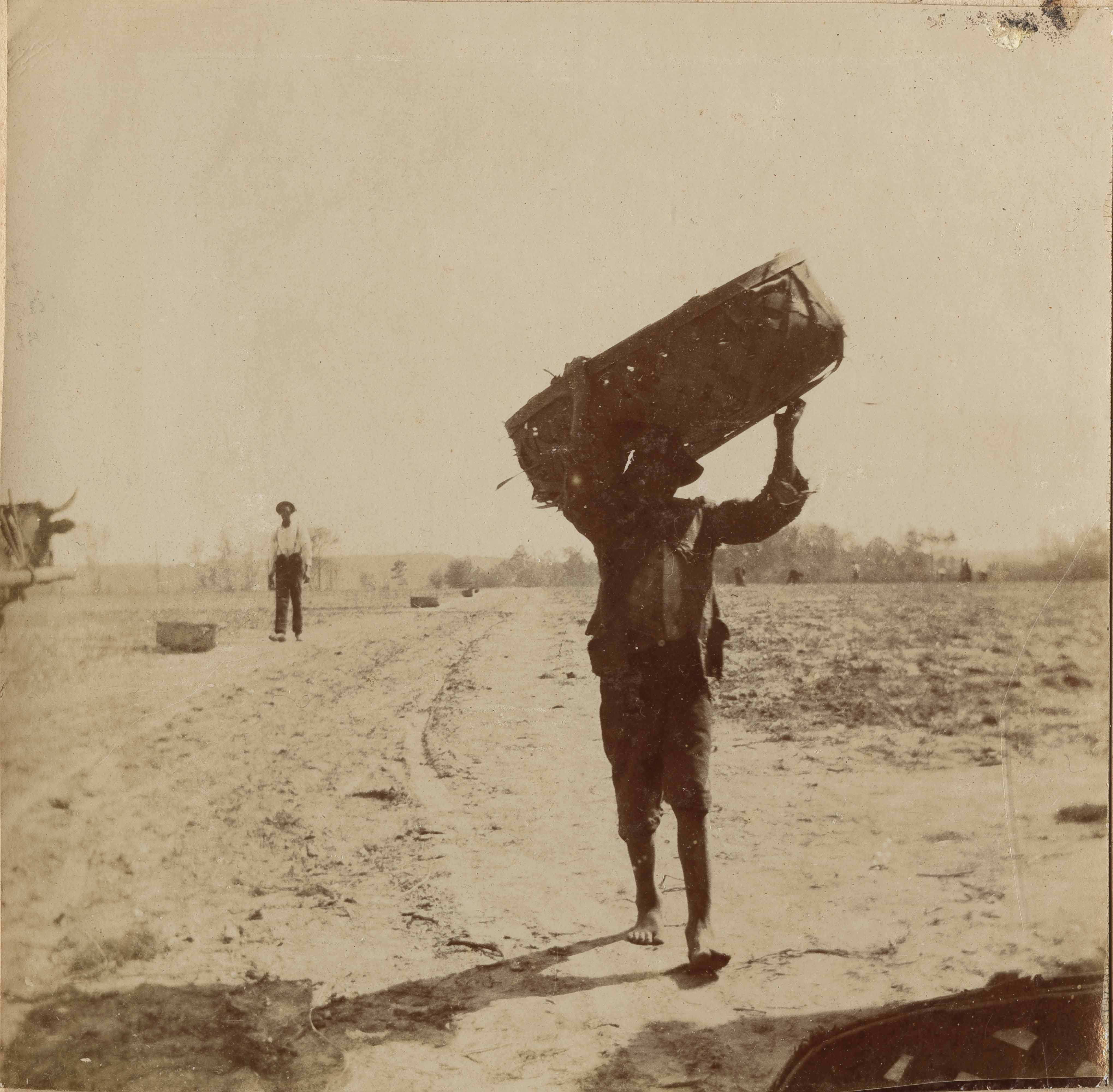 Another view of man carrying basket