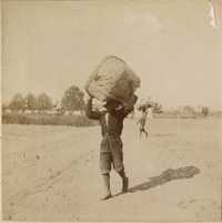 Man carrying basket