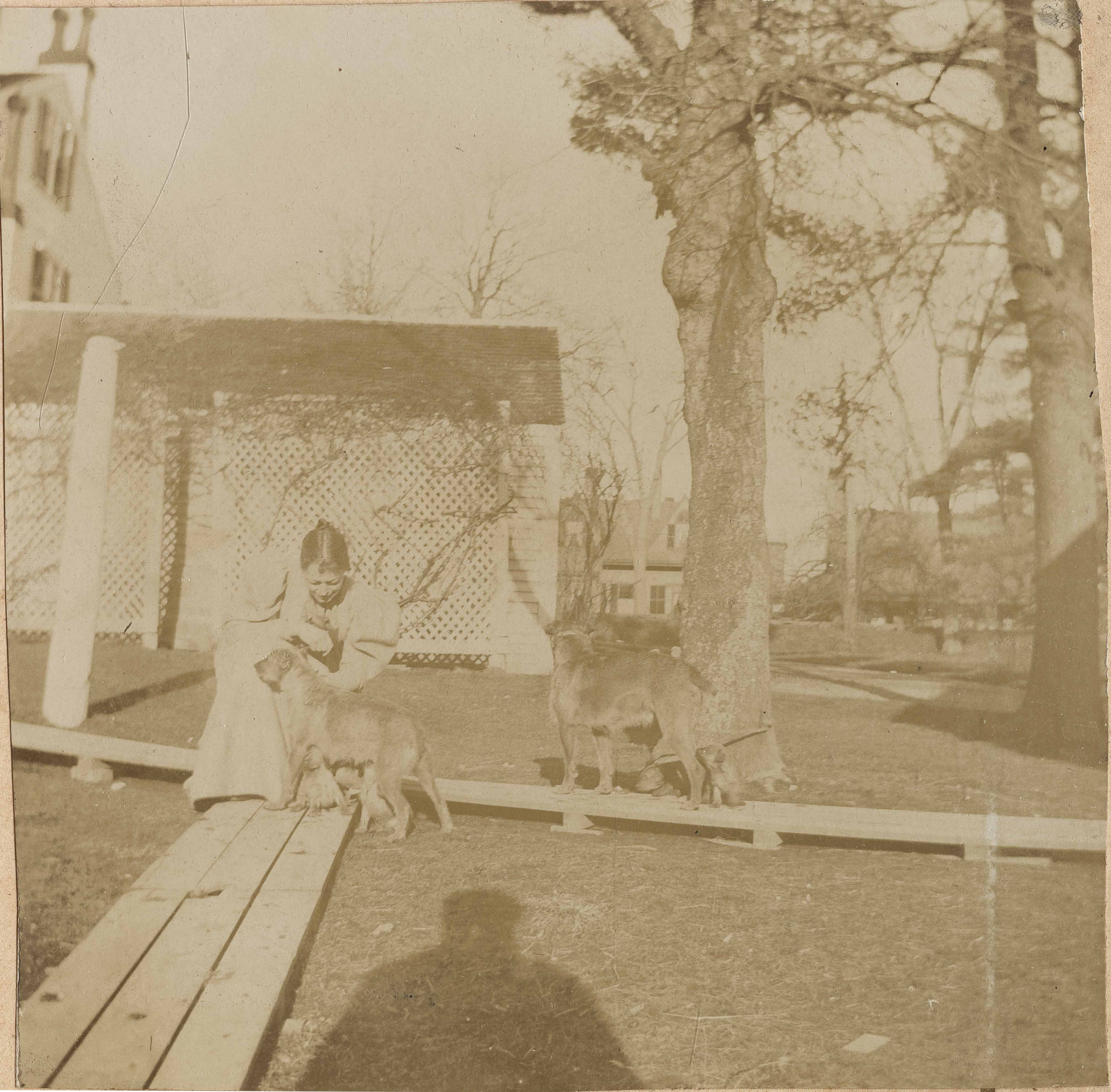 Woman, child, and dogs in backyard