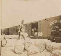 Barrels ready to roll into ventilated railroad car