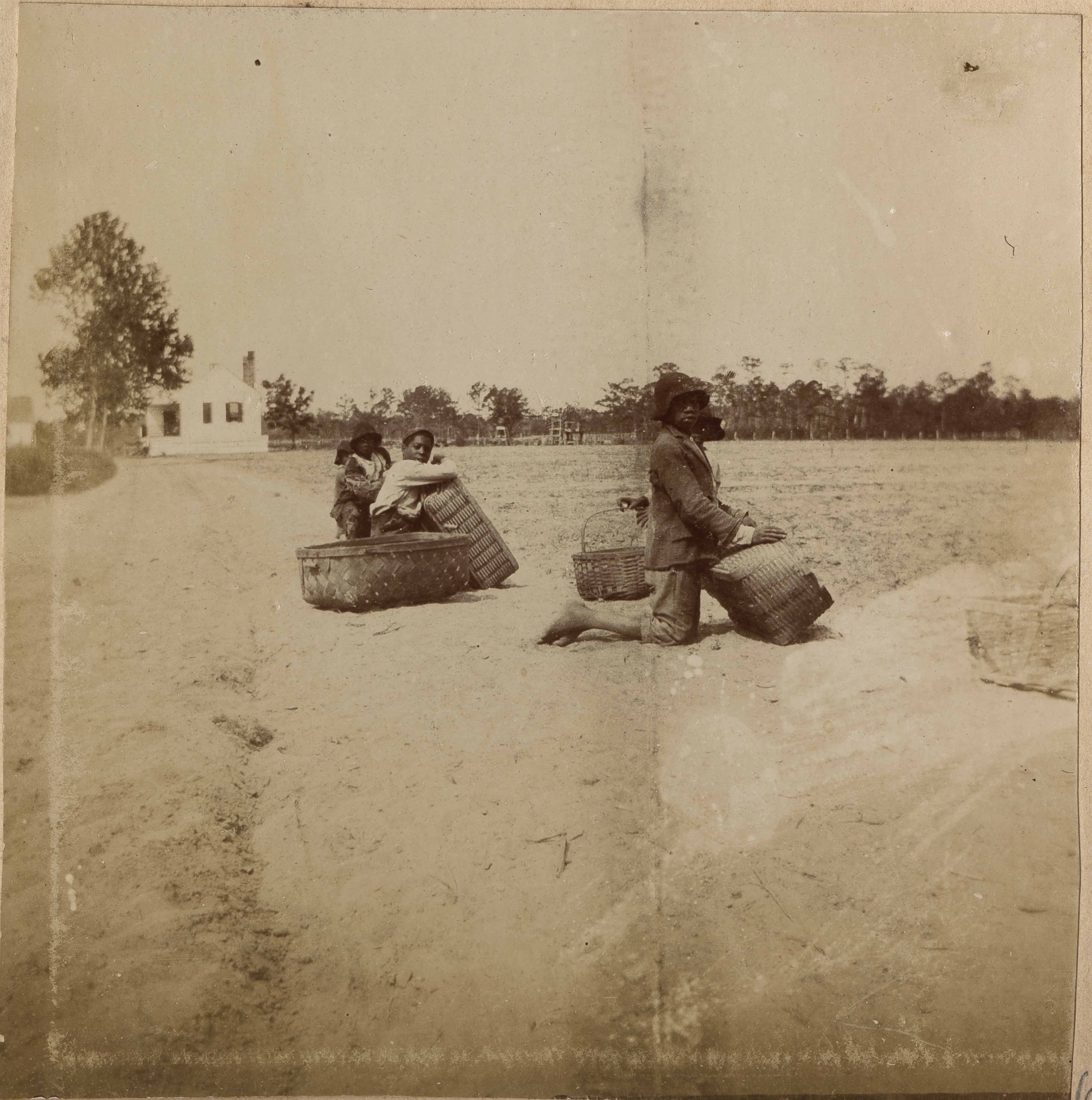 Three men with five baskets in field