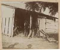 Men gathering equipment from shed