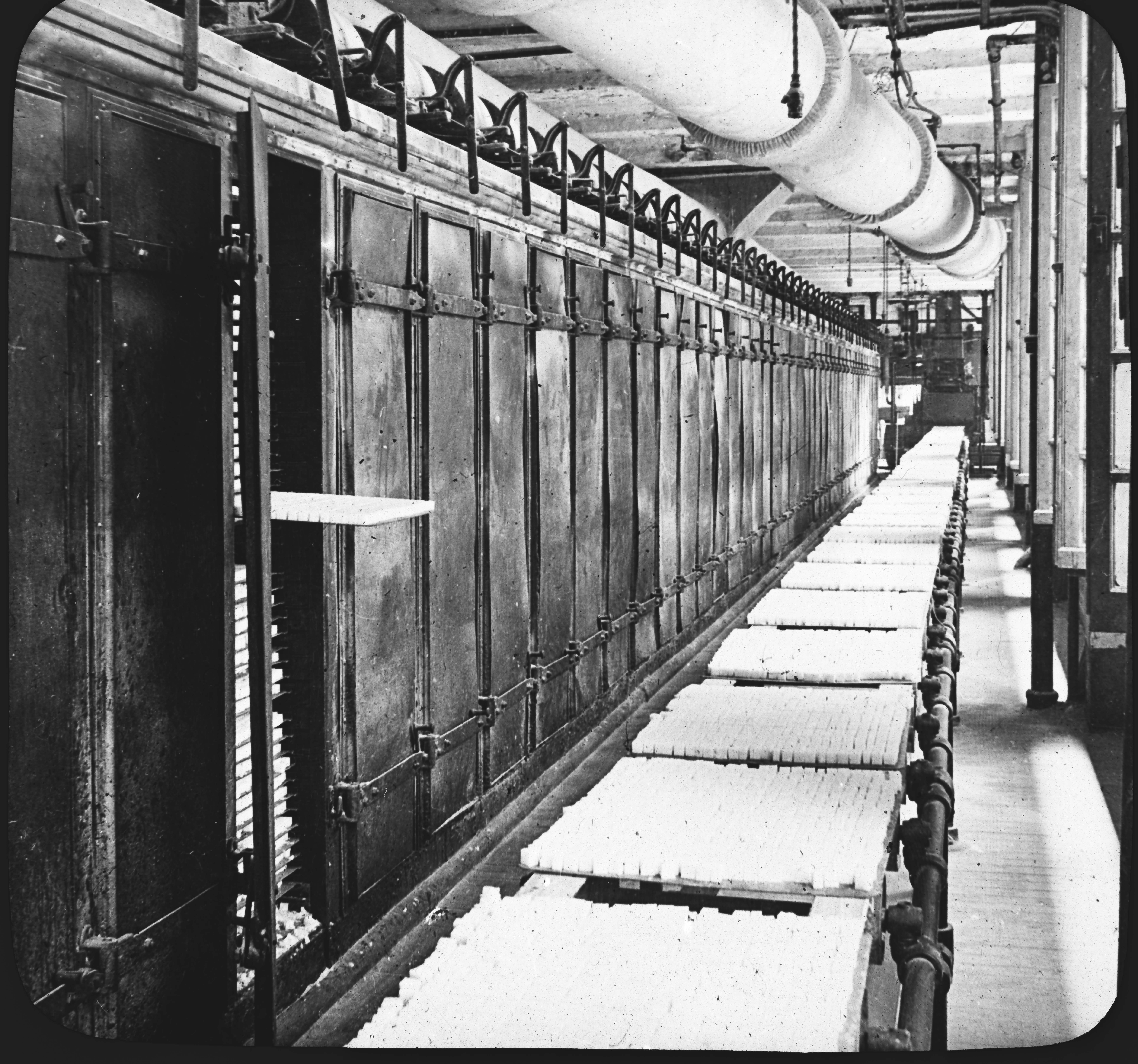 Conveyor with Loaf Sugar from Drying Kiln, New York City.