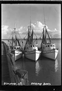 Beaufort, S.C. Shrimp boats