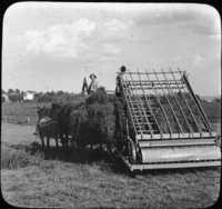 Alfalfa Hay and Loader on farm of W.J. Bryan, Lincoln, Nebraska.