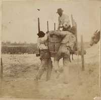 Men struggle with barrel full of harvested potatoes