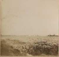 Tilled fields on Halls Island