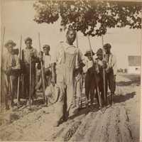 Group of agricultural workers with hoes